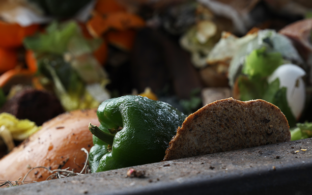 Some of the food scraps collected by Impact Earth during a day's pickups. - PHOTO BY MAX SCHULTE