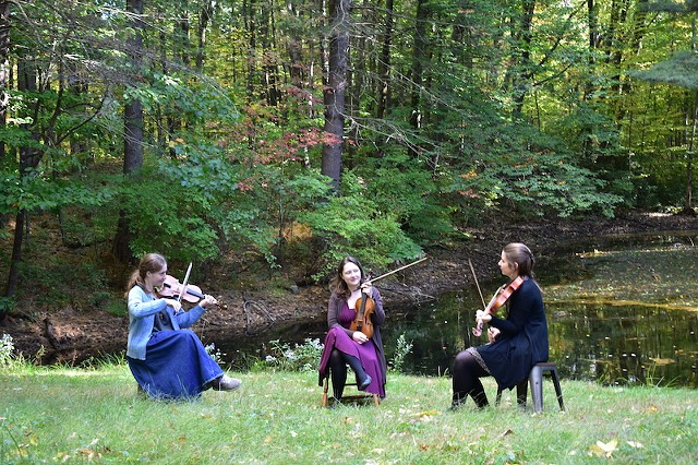 berwick-fiddle-consort-sm.jpg