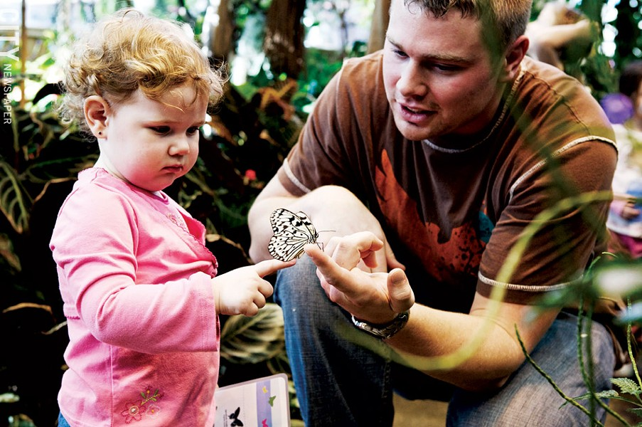 A young muesum-goer inspects a butterfly at the Dancing Wings Butterfly Garden in the Strong National Museum of Play. - FILE PHOTO