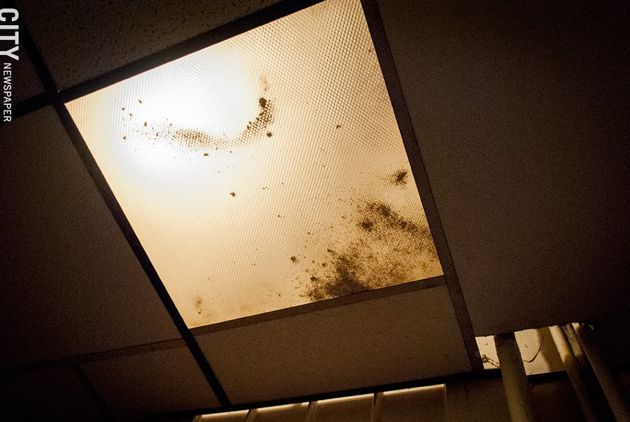 Tenants at 447 Thurston Road have filed complaints with their landlord about mold growing on their ceiling. These issues, tenants say, continue to go unaddressed. - FILE PHOTO