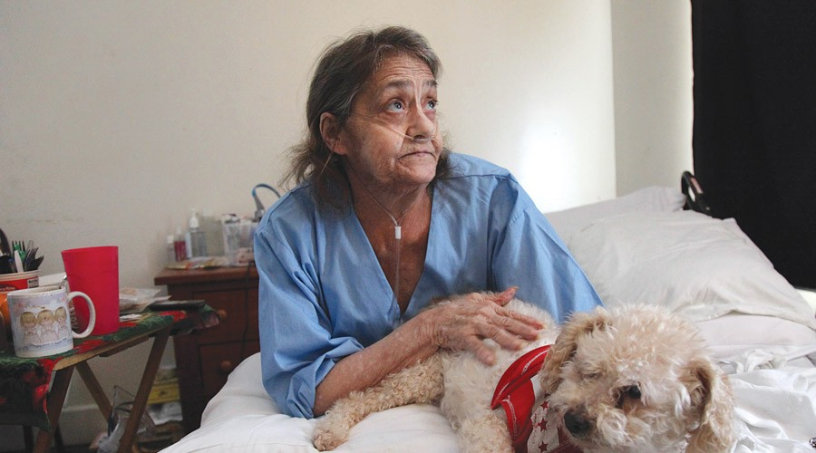Linda Barger sits in the bed of her Sherman Street apartment with her dog, Bear.