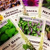 A variety of organic medicinal tea herb seed packets offered by Fruition.