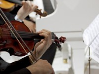 CLASSICAL | Finger Lakes Chamber Music Festival