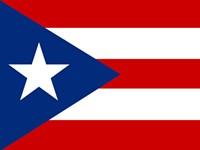 FESTIVAL   Puerto Rican Festival