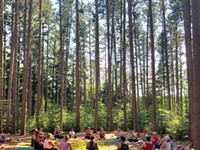 RECREATION | Yoga in the Pines