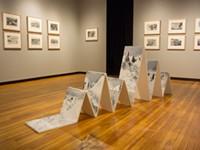 Modern landscapes on display at VSW