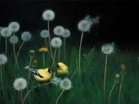 ART   'Birds in Art'