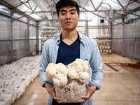 Leep Foods grows super 'shrooms