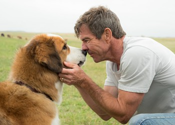 """Film review: """"A Dog's Purpose"""""""