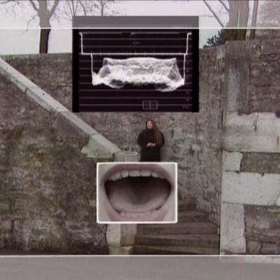 "Peter Greenaway -- ""Stairs 1: Geneva, the Location"""