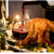 Thanksgiving Food and Wine Pairing Class @ Via Girasole Wine Bar