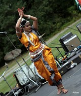 India fest 2018 Photo - Uploaded by Steve K
