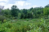 Pond Life Exploration June 12 & 13, 11am-1pm - Uploaded by RMSC