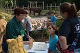 516d6695_elephant-awareness-day-2014-kelli-o_brien-_12_.jpg