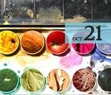 f2d88e91_oct21watercolorclass_2048x2048.jpg