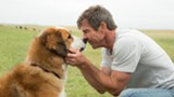 "PHOTO COURTESY UNIVERSAL PICTURES - Dennis Quaid and canine companion in ""A Dog's Purpose."""