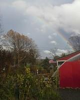 98a4e9c4_garden_center_rainbow.jpg