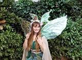8b4e570a_fairy_house_magic.jpg