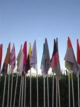 909189e0_flags_rs.jpg