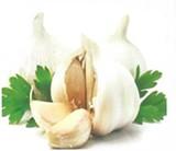 184cdab8_garlic_image.jpg