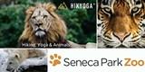 e9723aad_hikyoga-at-the-zoo-2017.jpg