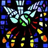 3ef02a4b_incarnate_word_dove.jpg
