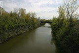FILE PHOTO - The New York State Canal Corporation plans to remove trees from some areas along the canal.