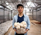 PHOTO BY RYAN WILLIAMSON - George Zheng, co-founder and COO of Leep Foods, holds a fruiting Lion's Mane mushroom at the company's grow warehouse.