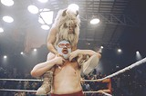 """COURTESY PARAMOUNT PICTURES - Who is that masked man? It's Jack Black, fighting off tiny - yak men in """"Nacho Libre."""""""