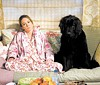 Womans best friend: Diane Lane in Must Love Dogs.