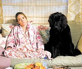 WARNER BROS. - Womans best friend: Diane Lane in Must Love Dogs.