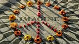 93a625ec_lennon_memorial_peace_symbol.jpg