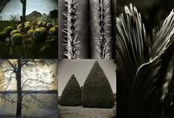 2013_fotoseptiembreusa-calendar_crutchfield-garza-harrison-lynch-randolph_bihl-haus-artsjpg