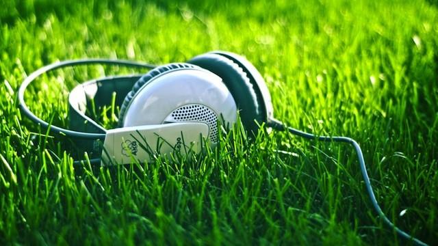 grassyphonesjpg