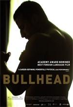 bullhead2jpg