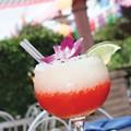 City Guide: San Antonio restaurants for 2011