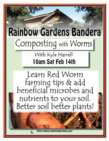 b09f233f_composting_with_worms_bandera.jpg