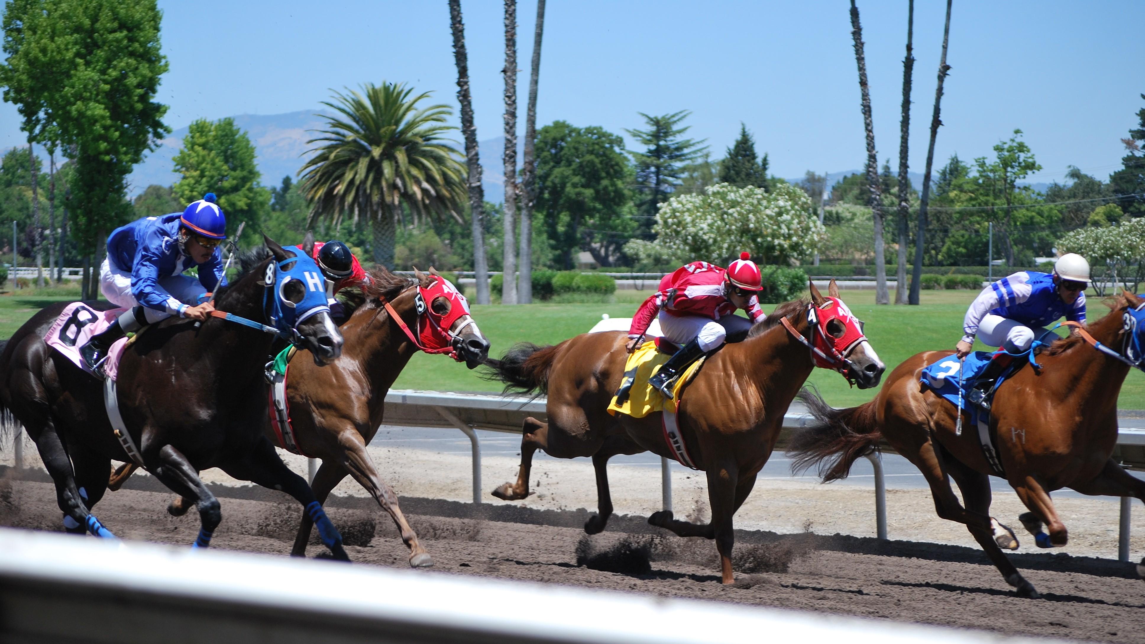 horse-racing3jpg