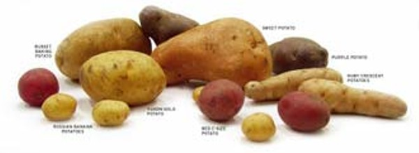 food-potatoes_330jpg