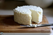 Fresh homemade cheeses in about an hour!