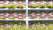 Grow up, not out, with vertical gardening