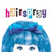 hairsprwebsqu.jpg