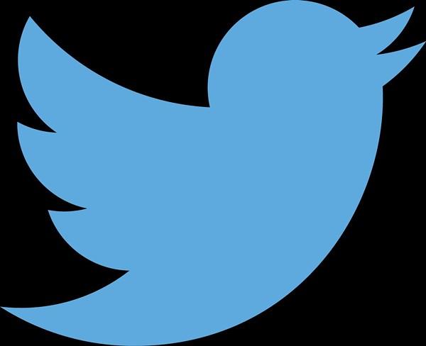twitter_logo_bluejpg