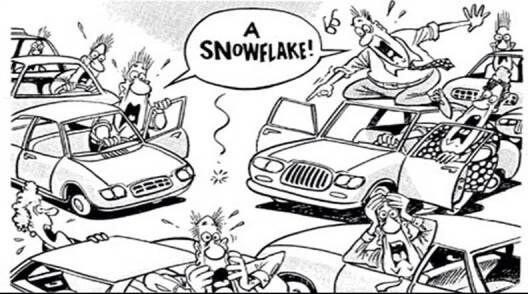 snowjpg
