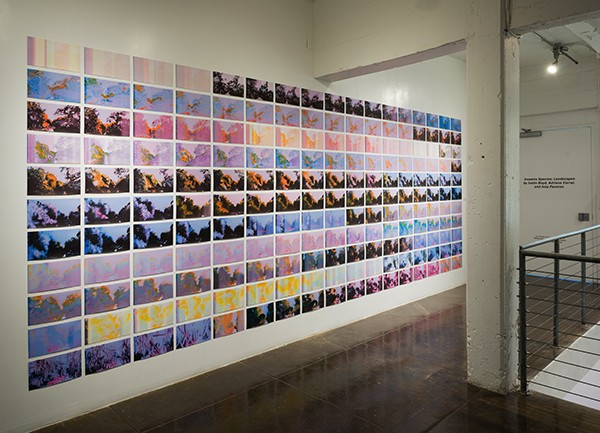 Installation views of Joey Fauerso's 'Guadalupe-After Images' as a collage of 187 digital prints of oil paintings - COURTESY