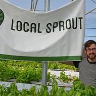 Meet LocalSprout, SA's hydroponic veggie farm