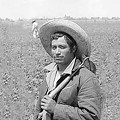 Nick Flynn & Bittersweet Harvest