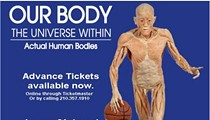 Our Body: The Universe Within