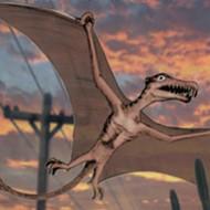 Pterosaurs over the Alamo? It's Jurassic ... er, Olmos Park