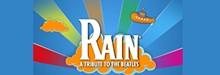 detail-rain.jpg